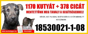 2011_buszreklam2-1024x400