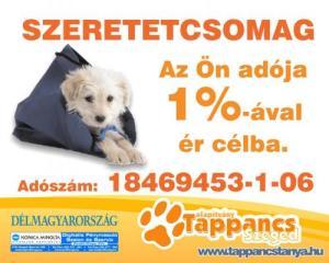adoszam_18469453-1-06